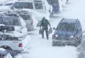 美国暴雪2